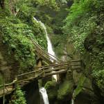 2630_40 Caminho da Cachoeira, Sichuan, China