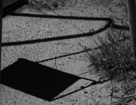 Forked Path - Megan Skelly